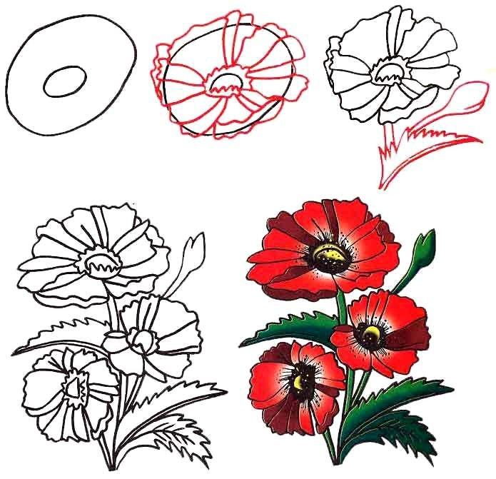 тебе все научиться рисовать картинку с цветами могу вас уверить